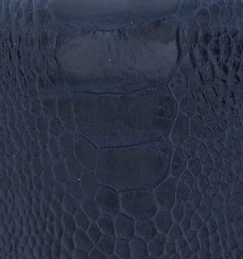 Blu scuro zampa