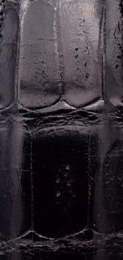 Nero pancia coccodrillo